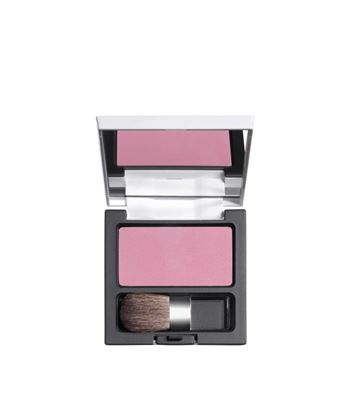 Picture of Powder Blush 09