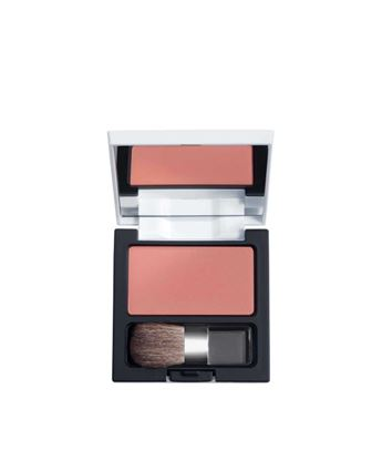 Picture of Powder Blush 13