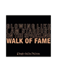 Picture of WALK OF FAME - FACE & EYES PALETTE