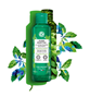 Picture of Pure Menthe Mattifying Powder Lotion